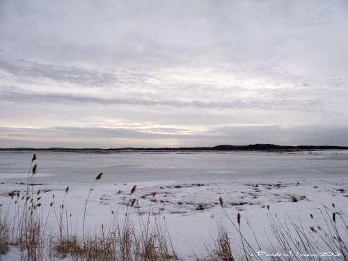 Winter on the Salt Pannes ~ c. Pamela J. Leavey