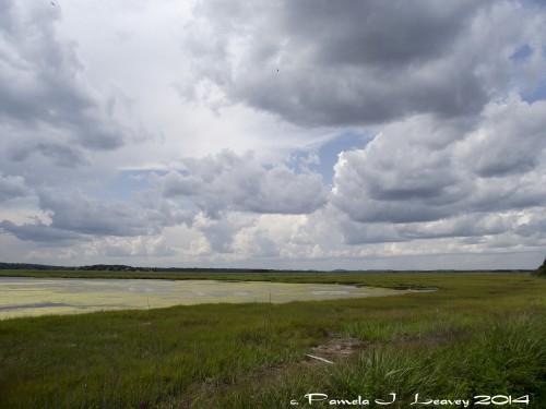 Salt Pannes ~ c. Pamela J. Leavey