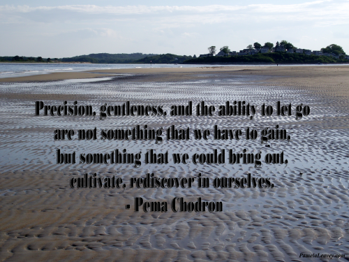 Precision, gentleness, and the ability to let go … are not something that we have to gain, but something that we could bring out, cultivate, rediscover in ourselves.
