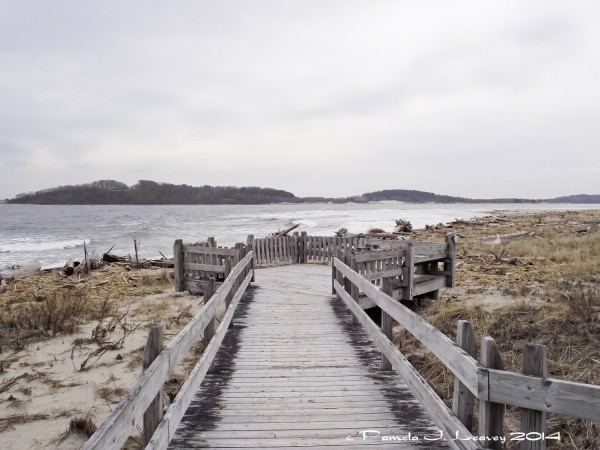 sandy point trail