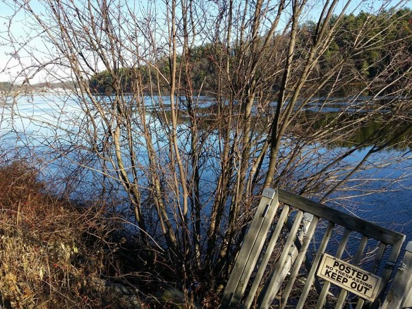 Merrimack River Amesbury, MA Photo: Pamela Leavey