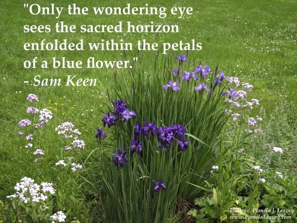 Sam Keen Wondering Eye Quote