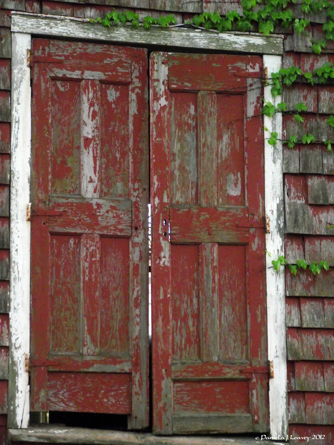 Old Red Barn Doors Pamela Leavey