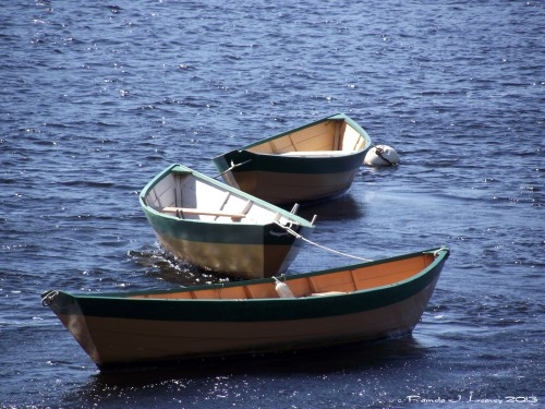 Dories at Lowell's Boat Shop ~ c. Pamela J. Leavey 2013