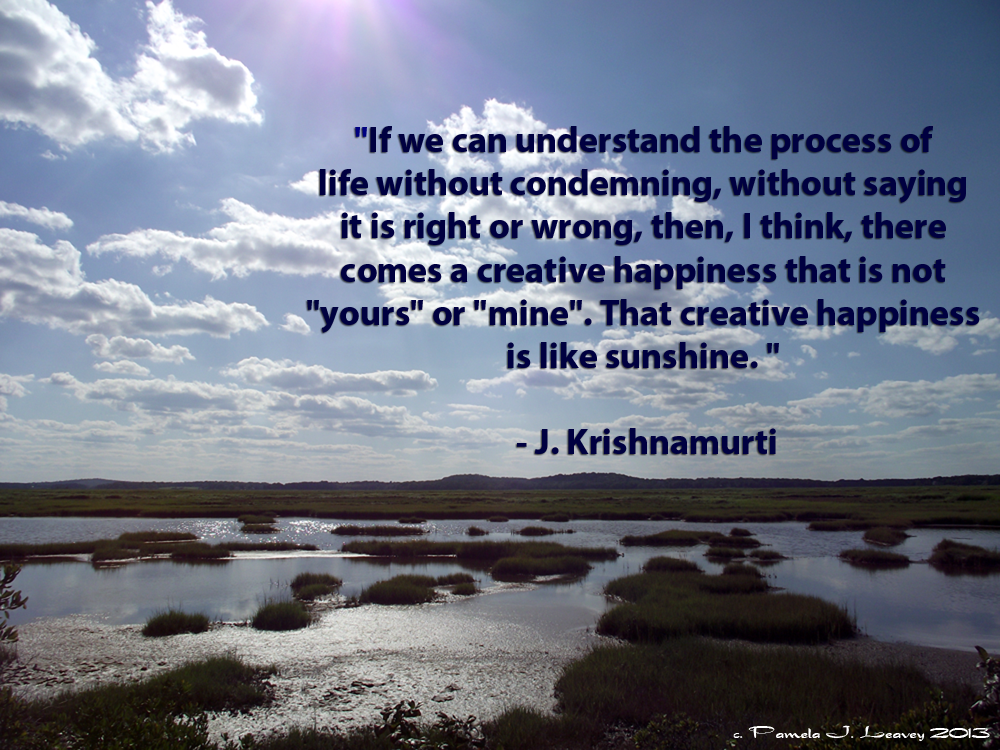 the book of life daily meditations with krishnamurti pdf