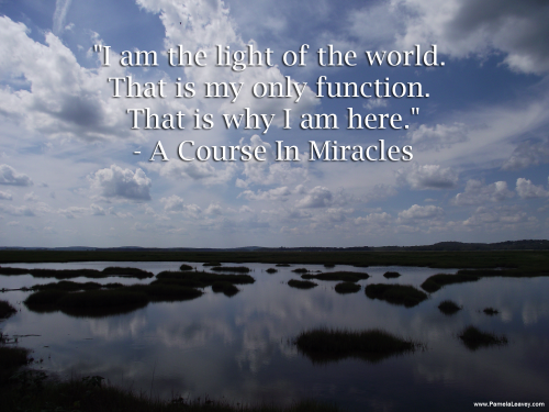 """I am the light of the world.  That is my only function.  That is why I am here.""  - A Course In Miracles"