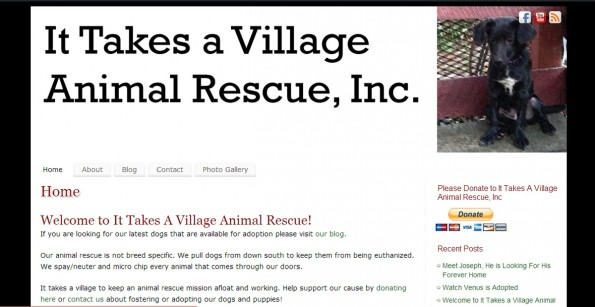 It Takes A Village Animal Rescue