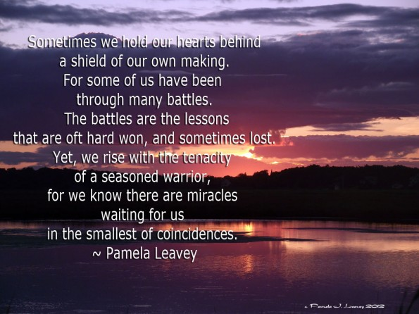 Sometimes we hold our hearts behind a shield of our own making. For some of us have been through many battles. The battles are the lessons that are oft hard won, and sometimes lost. Yet, we rise with tenacity of a seasoned warrior, for we know there are miracles waiting for us in the smallest of coincidences.