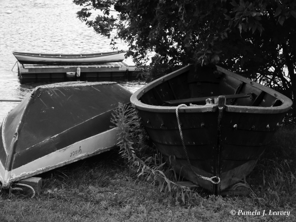 old dories on river bank
