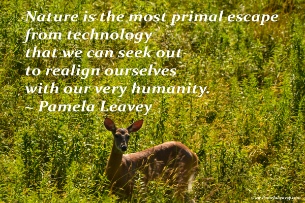 Nature is the most primal escape from technology that we can seek out to realign ourselves with our very humanity. ~ Pamela Leavey